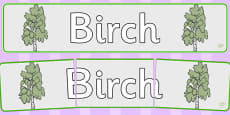 Birch Display Banner