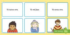 Mothúcháin Matching Cards Gaeilge