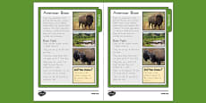 USA Bison Fact Sheet