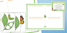 A Tiny Caterpillar EYFS Interactive Poster and Resource Pack