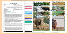 EYFS Animal Boogie Adult Input Plan and Resource Pack