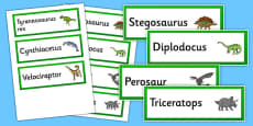 Realistic Dinosaurs Word Cards