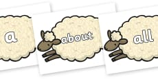 100 High Frequency Words on Sheep
