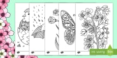 Adult Colouring Mindfulness (Spring)