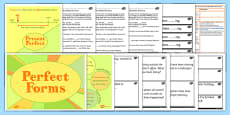 Use the Perfect Form of Verbs to Mark Relationships of Time and Cause Lesson Ideas