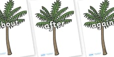 KS1 Keywords on Palm Trees