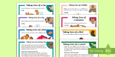 KS1 Pet Care Reading Comprehensions Pack