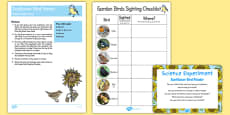 Sunflower Bird Feeder Science Experiment and Prompt Card Pack