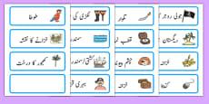 Pirate Word Cards Urdu
