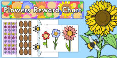 Flowers Reward Display Pack