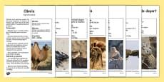 Animale din deșert - Planșe informative