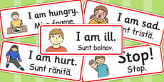 Survival Vocabulary Cards EAL Romanian Translation