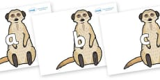 Phase 2 Phonemes on Meerkats