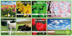 Colours in Spring Display Posters German