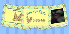 Australia - Hen Life Cycle PowerPoint
