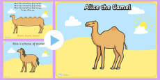 Alice the Camel PowerPoint