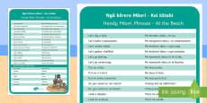 * NEW * Kei tātahi - At the Beach Information Cards English/Te Reo Maori