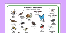Minibeast Word Mat Polish Translation