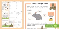 * NEW * KS1 How to Look After a Rabbit Differentiated Reading Comprehension Activity