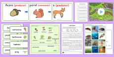 * NEW * Food Chains KS2