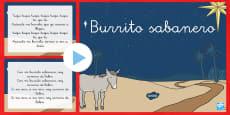 Presentación: Burrito Sabanero
