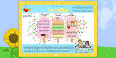 Ice Lollies Recipe Ideas