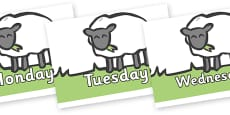 Days of the Week on Sheep to Support Teaching on Pig in the Pond