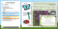 EYFS Minibeast Sort Finger Gym Activity Plan and Resource Pack