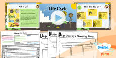 PlanIt - Science Year 3 - Plants Lesson 6: Life Cycle Lesson Pack