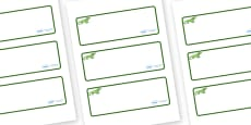 Iguana Themed Editable Drawer-Peg-Name Labels (Blank)