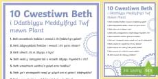 10 Cwestwin Beth i Ddatbylgu Meddylfryd Twf mewn Plant Poster Arddangos A4