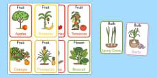 Edible Plant Parts Flash Cards