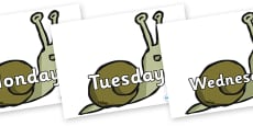 Days of the Week on Snails