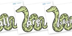 Tricky Words on Snakes