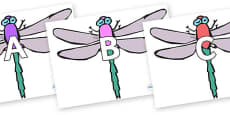 A-Z Alphabet on Dragonflies
