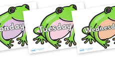 Days of the Week on Green Tree Frog