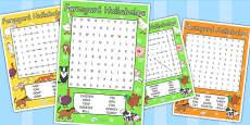 Word Search to Support Teaching on Farmyard Hullabaloo