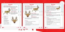 KS1 Reindeer Differentiated Reading Comprehension Activity