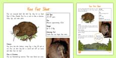 New Zealand Native Birds Kiwi Fact Sheet