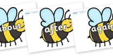 KS1 Keywords on Bees