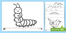 Colouring Sheets to Support Teaching on The Crunching Munching Caterpillar