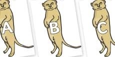 A-Z Alphabet on Meerkats
