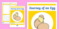 Chick Hatching Observation Booklet