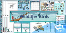 PlanIt - Art UKS2 - Wildlife Unit Additional Resources