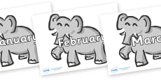 Months of the Year on Elephants