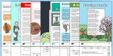 Year 4 Reading Assessments Pack