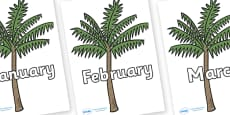 Months of the Year on Palm Trees