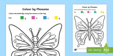 Colour by Phoneme Butterfly Phase 2 g, o, c, k