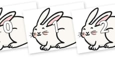Numbers 0-100 on Chinese New Year Rabbit