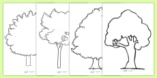 Tree Outline Worksheets